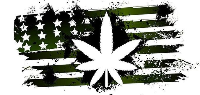 marijuana-america-735-350.jpg